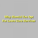 Why Should You Opt For Lawn Care Services
