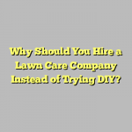 Why Should You Hire a Lawn Care Company Instead of Trying DIY?