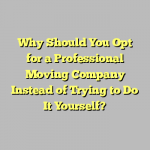 Why Should You Opt for a Professional Moving Company Instead of Trying to Do It Yourself?
