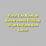 Facts You Need to Know about Fishing Trips In Cabo San Lucas