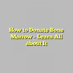 How to Donate Bone Marrow – Learn All about It